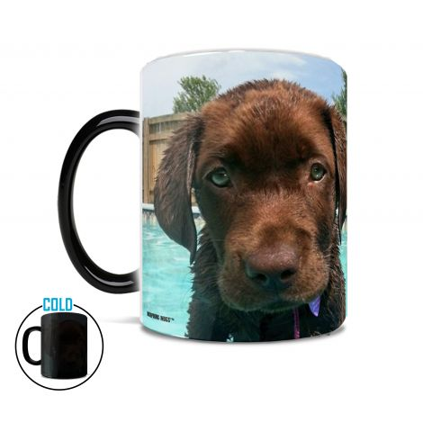 Personalize your own Morphing Mugs heat-sensitive drinkware with your photo.